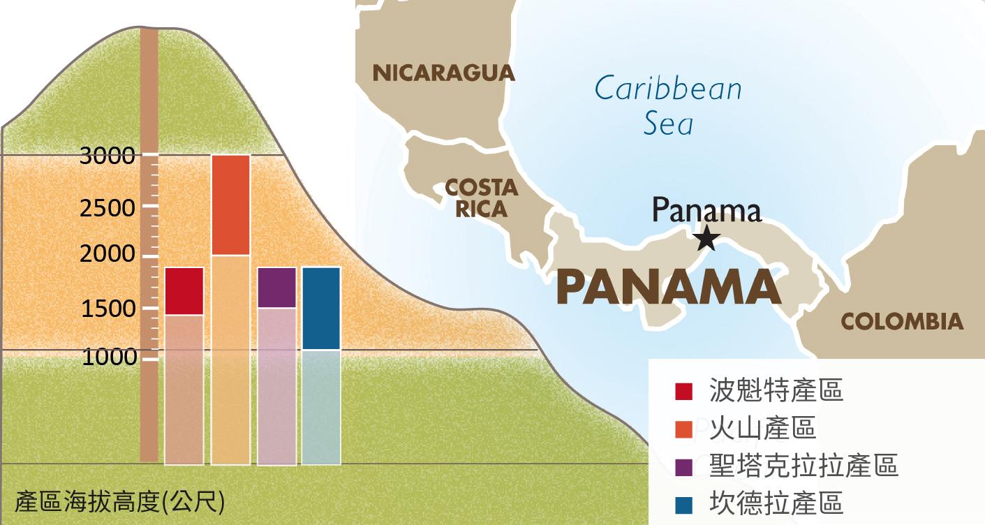 品味地域之味 │ 巴拿馬的四大產區與精品咖啡之路 ~ 卡塔摩納咖啡
