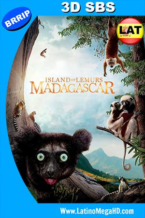 Island Of Lemurs: Madagascar (2014) Latino 3D SBS 1080p ()