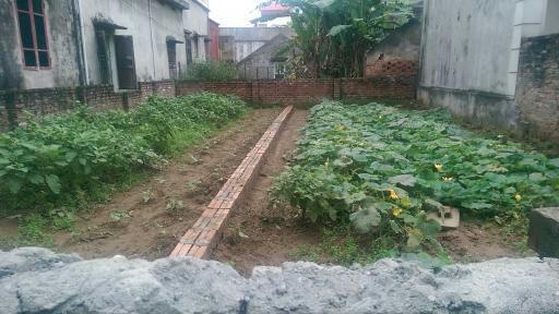 Cần bán gấp 2 lô đất duy nhất với giá siêu mềm tại xã Vĩnh Ngọc