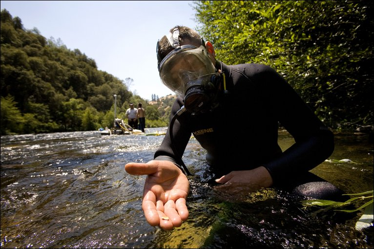 Gold Mining How To Find Gold In Rivers And Streams