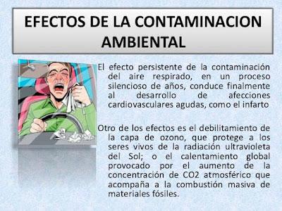 efectos de la contaminacion ambiental