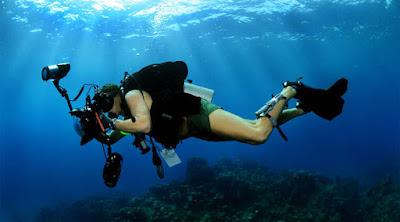 أفضل النصائح للتصوير بدلو غطس تحت الماء بشكل احترافى وجميل غوص غواص دايفينج سنوركلينج  equipment suit diving diver water photo camera shooting