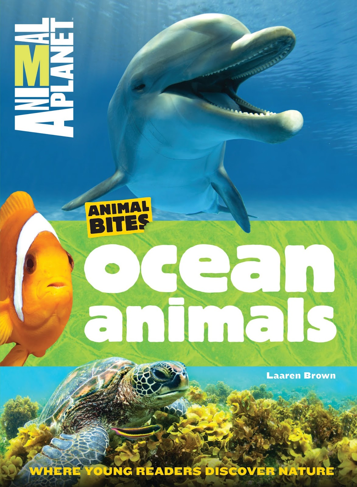 literary hoots animal planet ocean and polar animals books with