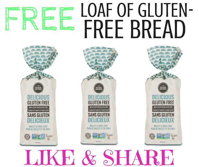 Free Loaf of Gluten Free Bread By Little Northern Bakehouse
