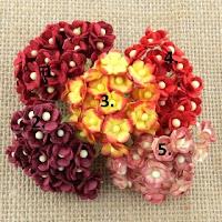 http://scrapkowo.pl/shop,kwiatuszki-sweetheart-blossom-czerwone-5,4074.html