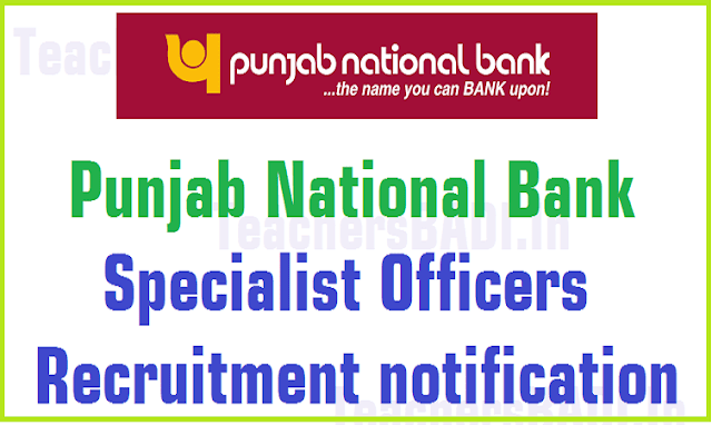 Punjab National Bank,PNB,Specialist Officers,Recruitment