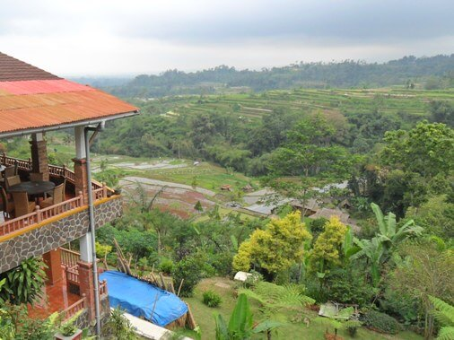 The rural areas of Bali are really famous for its natural beauty together with cultural richness that  BaliBeaches: Pacung rice terrace Bali - Beautiful valley & Rice Terrace inwards Tabanan Bali