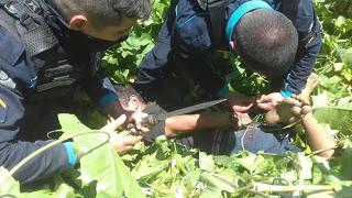 Polícia resgata jovem amarrado 'prestes a ser executado' por traficante