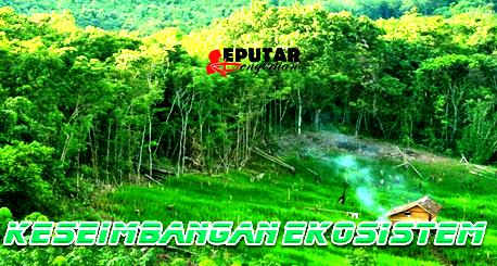 Pengertian Keseimbangan Ekosistem