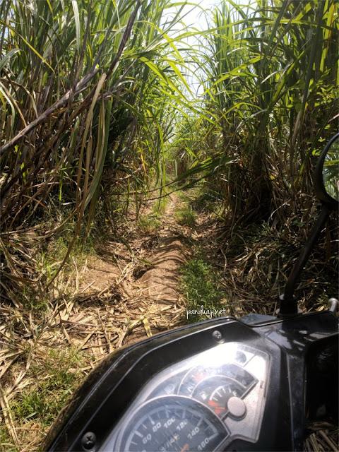 Foto Jalan ke Pantai Keben