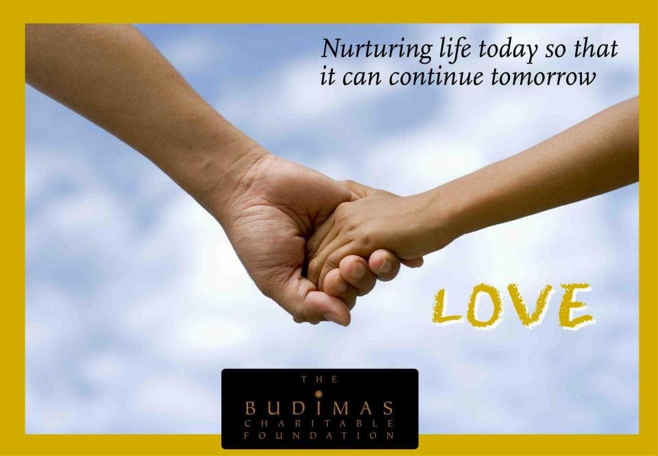 The Budimas Charitable Foundation, budimas, charity foundation, charity