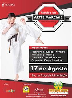 Santa Cruz Shopping promove mostra de artes marciais nesta quarta-feira