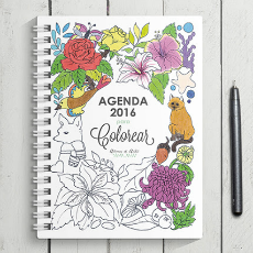 agenda_bonita_original_2016