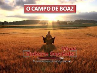 O CAMPO DE BOAZ