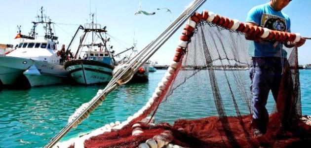 بيان المجموعة الصحراوية للصيد البحري حول قرار محكمة العدل الاوروبية وسياسات الاحتلال المغربي