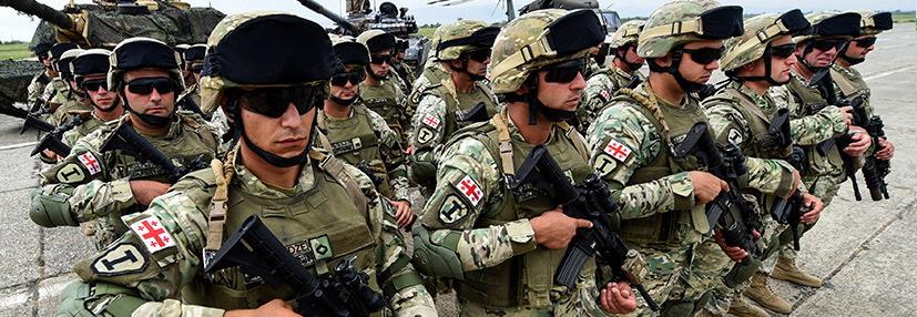 Грузинська армія буде переозброєна на гвинтівки М4