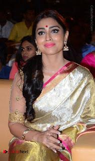 Actress Shriya Saran New Images in Silk Saree at Gautamiputra Satakarni Audio Launch  0009.jpg