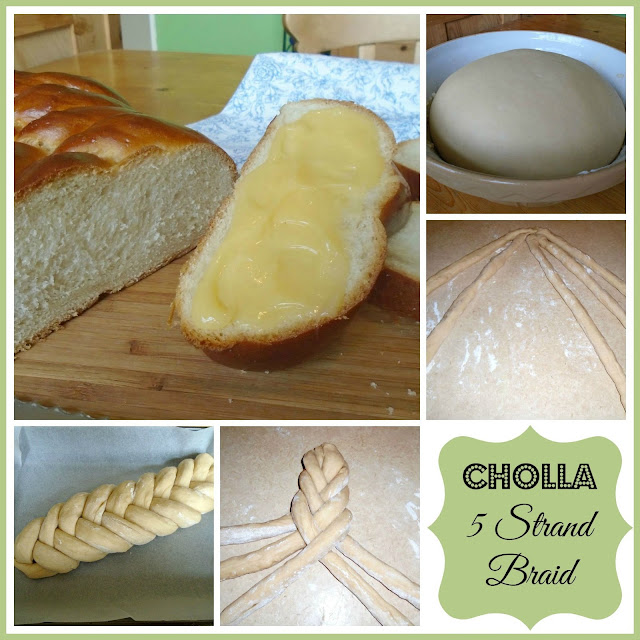 Cholla - 5 strand braid