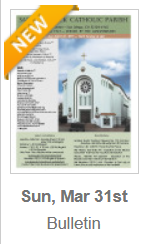 https://www.parishesonline.com/find/pastor-of-saint-patrick-catholic-parish-san-diego-california-corporation-sole/bulletin/file/05-0628-20190331B.pdf#