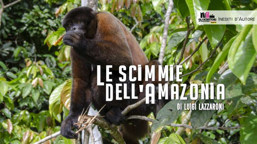 Le scimmie dell'Amazzonia, racconto di Luigi Lazzaroni