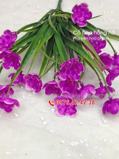 Phu kien hoa pha le tai Giang Vo