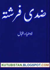 Ziddi Farishta