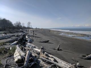 Elwha River delta along coast of Strait of Juan de Fuca.