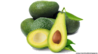 avocado clipart vector graphics
