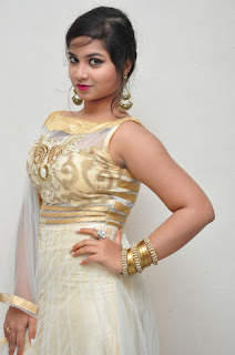 Sirisha at Bava Maradalu trailer launch 035.jpg