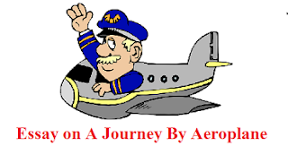 Essay on A Journey By Aeroplane