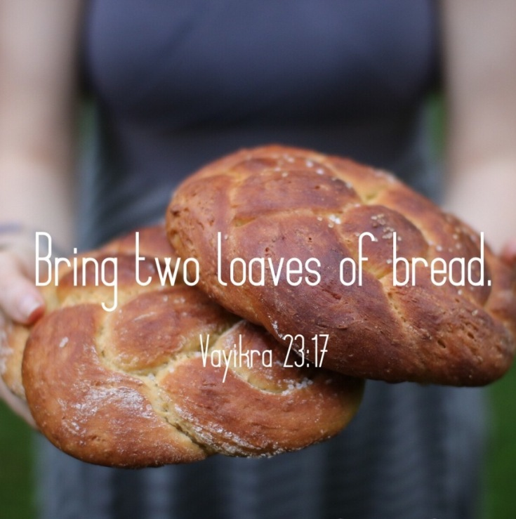Bring two loaves of bread to YHWH. - Leviticus 23:17 | Land of Honey
