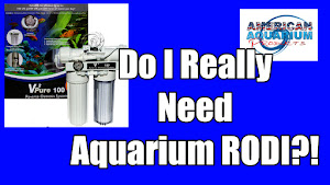 Aquarium RODI
