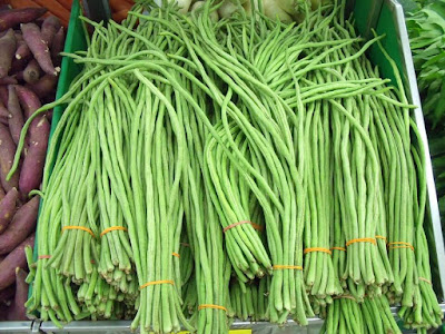 Peluang Usaha Sayuran Kacang Panjang