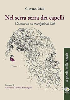 Nel Serra Serra Dei Capelli - L'Amore In Un Manipolo Di Odii PDF