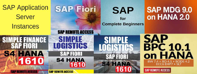 Online Sever Access: SAP IDES online server access provider