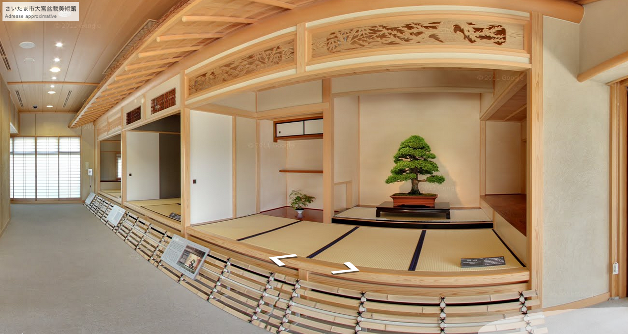 feel spirit l 39 esprit de phil bonsa une visite virtuelle du mus e du bonsa omiya via. Black Bedroom Furniture Sets. Home Design Ideas