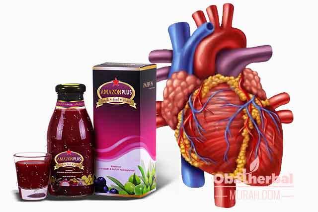 Amazon Plus Obat Gagal Jantung herbal