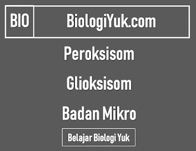 Fungsi Badan Mikro (Peroksisom dan Glioksisom)