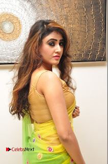 Actress Sony Charishta Pictures in Saree at Kalamandir 6th Anniversary Celebrations  0073