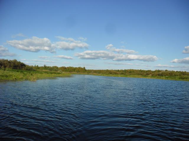 Река Подлесная