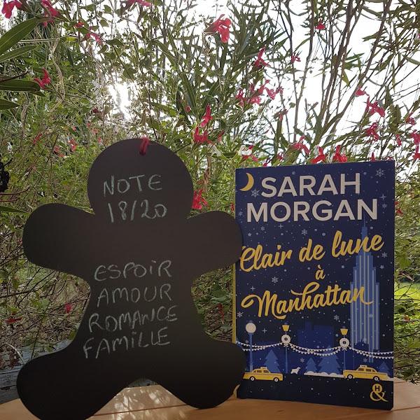 Clair de lune à Manhattan de Sarah Morgan
