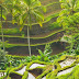 Peaceful of Ubud Bali Traveling