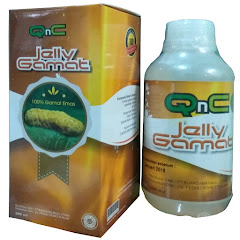 New Produk Jelly Gamat QnC