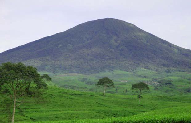 Keindahan di Balik Cerita Gunung Dempo Sumatera Selatan