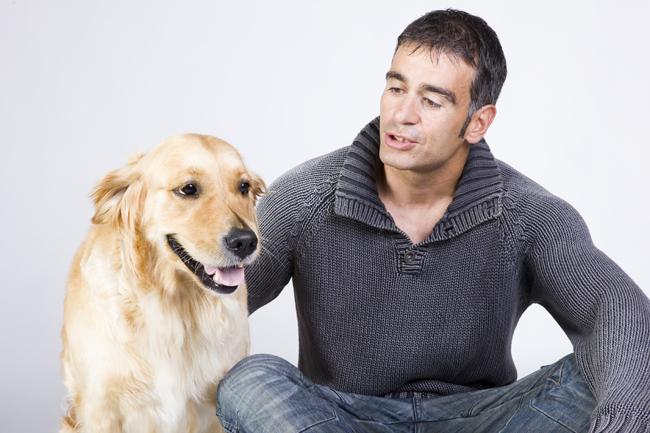 Pies towarzyszący