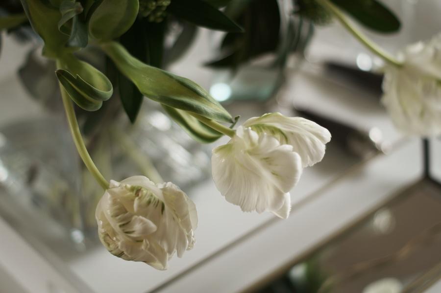 Blog + Fotografie by it's me ... fim.works - Papageientulpen in Grün und Weiß, Blüten