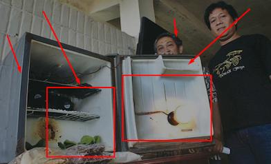 Cewek ini Beli Kulkas Bekas Murah Seharga Rp 400 Ribu Setelah Dibuka Ternyata Ada Sesuatu yang Mengerikan di Dalamnya