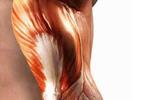 Agujetas o molestias en el tejido muscular