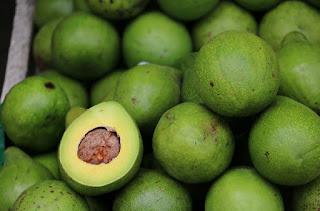 30 manfaat buah alpukat untuk kesehatan tubuh