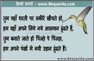 World Without Borders for Birds, Read this Hindi Shayari